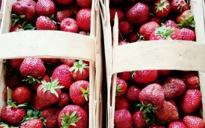Mrożenie owoców sezonowych